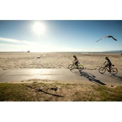 Fermeture estivale : arrêt des expéditions de vélo le 28/07 et des autres articles le 30/07. Reprise le 25/08.